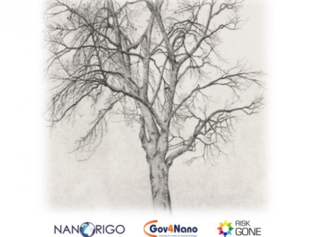 nanorigo-1